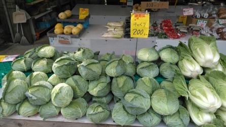 色とりどりの野菜が並びました。_c0160368_17092643.jpg