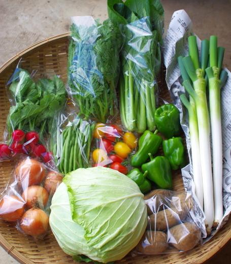 今週の野菜セット(9/22~9/26着)_c0110869_12371217.jpg