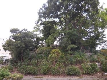 川越城_e0033570_13003925.jpg