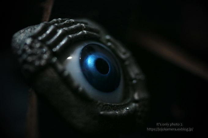 マクロdeパシャ!! -blue eye*Ⅱ-_b0391986_13485714.jpg
