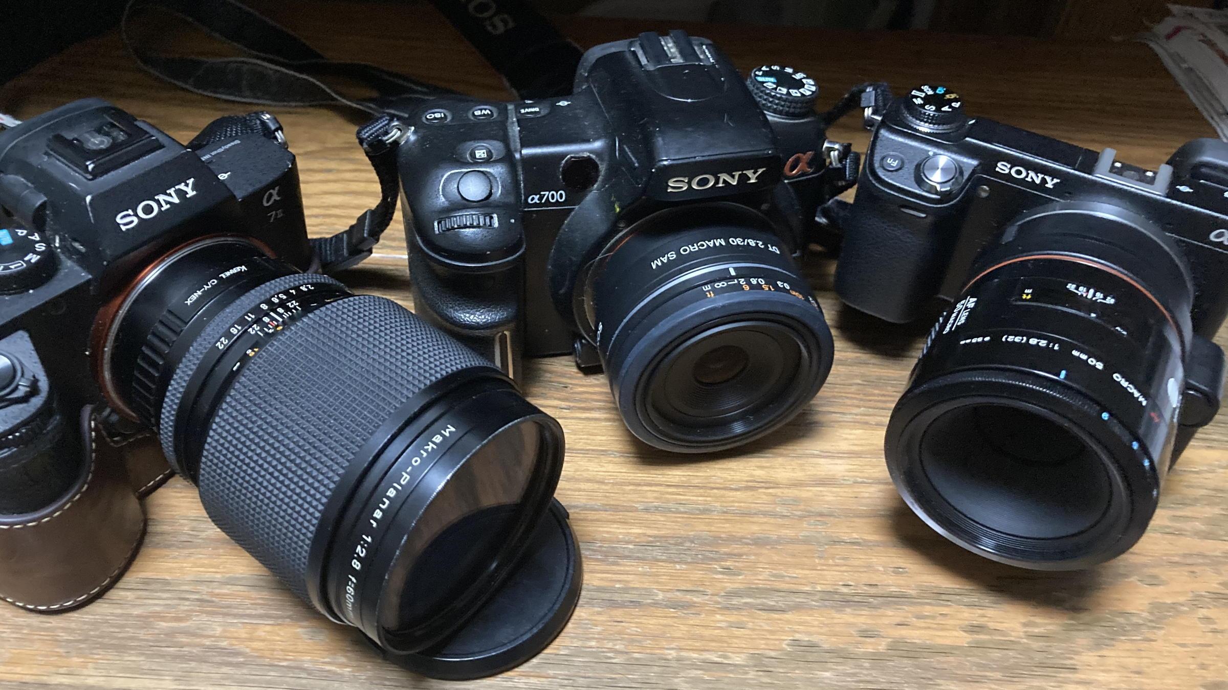 SONY DT 30mm F2.8 Macro_b0060239_22254747.jpg