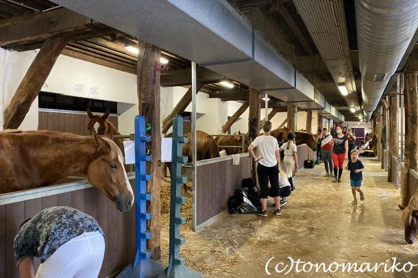 乗馬クラブのちびっ子ポニー体験会_c0024345_17215031.jpg