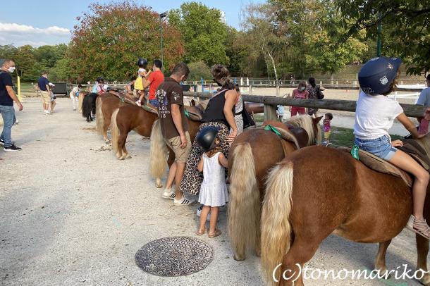 乗馬クラブのちびっ子ポニー体験会_c0024345_17215104.jpg