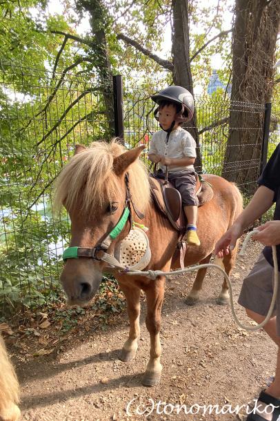 乗馬クラブのちびっ子ポニー体験会_c0024345_17215142.jpg