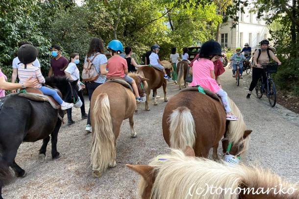 乗馬クラブのちびっ子ポニー体験会_c0024345_17215269.jpg