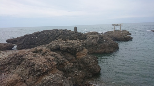 大洗海岸で貝化石発見_d0096268_20515193.jpg