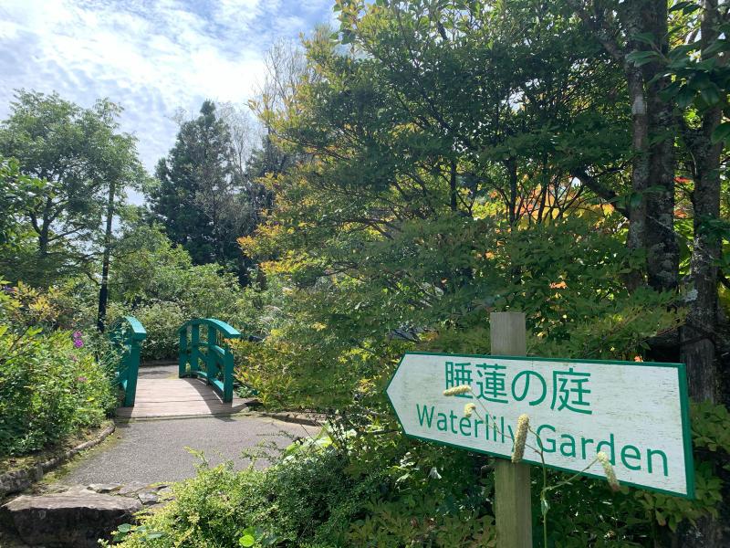 ガーデンミュージアム比叡_b0408892_19082121.jpg