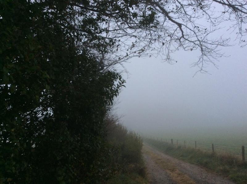 秋分を楽しく過ごすにはー霧の精霊からのメッセージも_b0110999_17433763.jpeg