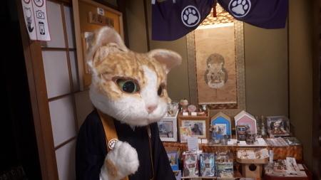 猫猫寺 さらにすごいことに(^-^) - 京都グルメタクシー おいしい京都