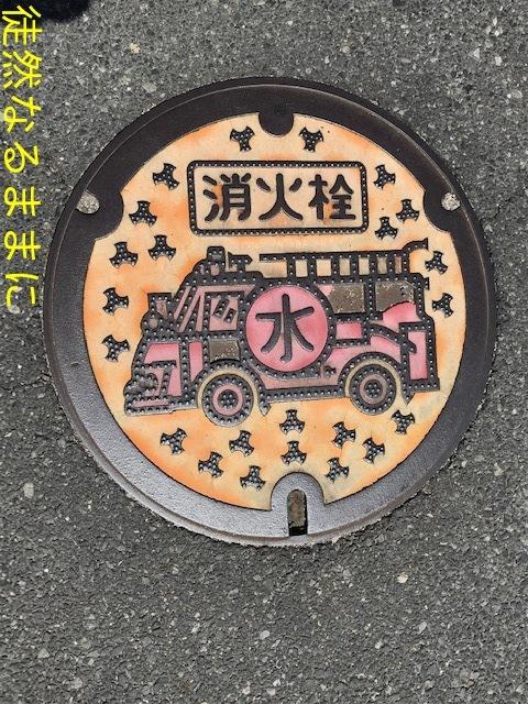タテハモドキ  in  福岡(生息地最北端)_d0285540_06410904.jpg