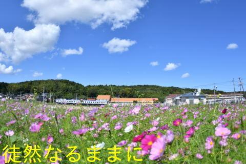 一畑鉄道_d0285540_19550050.jpg