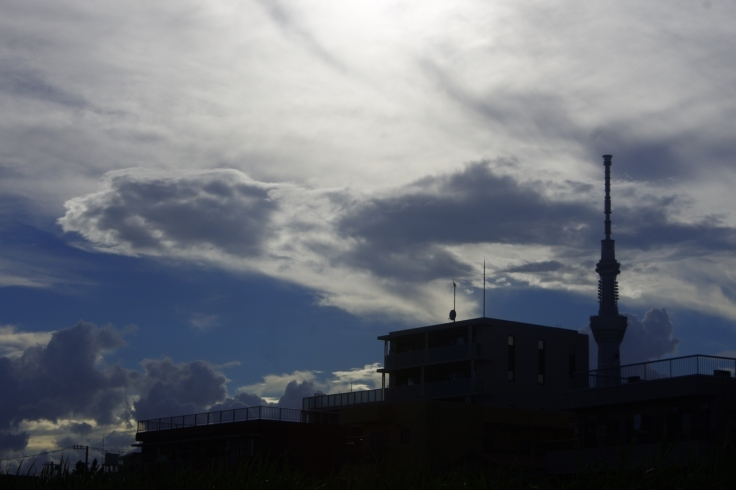 東京の空7_d0185744_17240052.jpg