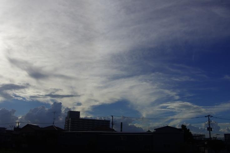東京の空7_d0185744_17250454.jpg