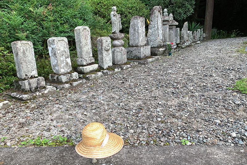 火曜日の祝日は雛鶴峠から犬目宿 2020年9月22日_d0123571_22235917.jpg