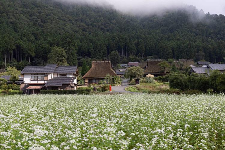 美山かやぶきの里_e0051888_05541771.jpg