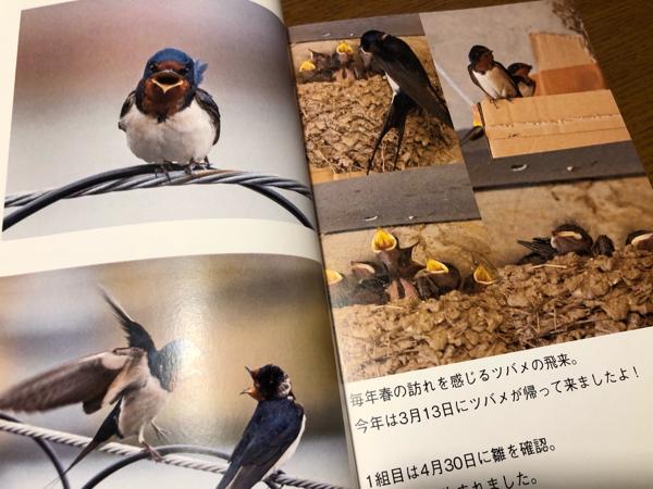 photo book・・・_e0372432_17560162.jpg