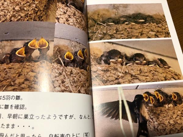 photo book・・・_e0372432_17560211.jpg