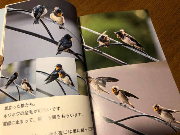 photo book・・・_e0372432_17560371.jpg