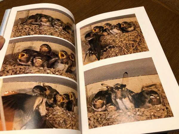 photo book・・・_e0372432_17560412.jpg