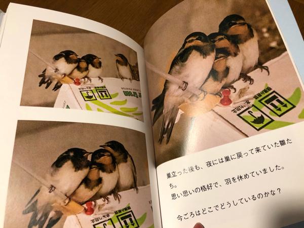 photo book・・・_e0372432_17570640.jpg
