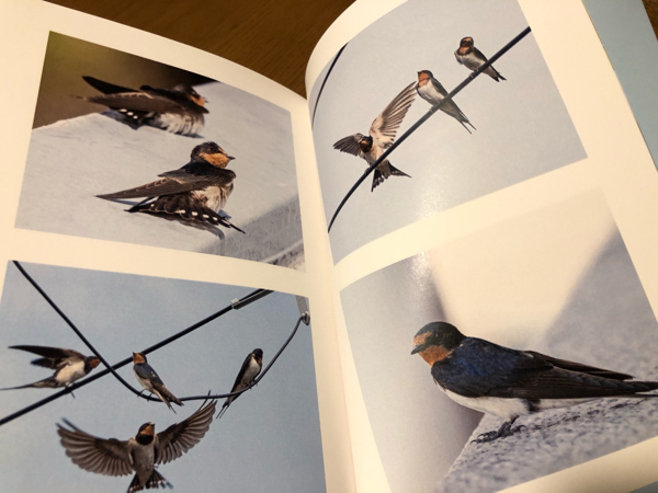 photo book・・・_e0372432_17570777.jpg