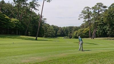 第40回 梶岡建設ジュニアゴルフ月例競技会_f0151251_11331428.jpg