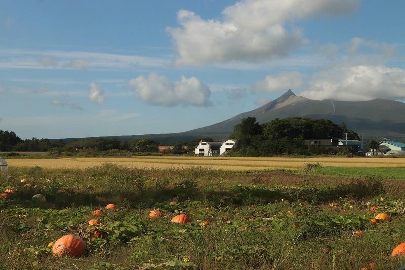 9月24日(木) 秋の始まりを感じながら ~大沼にて 1_b0250154_20095393.jpg