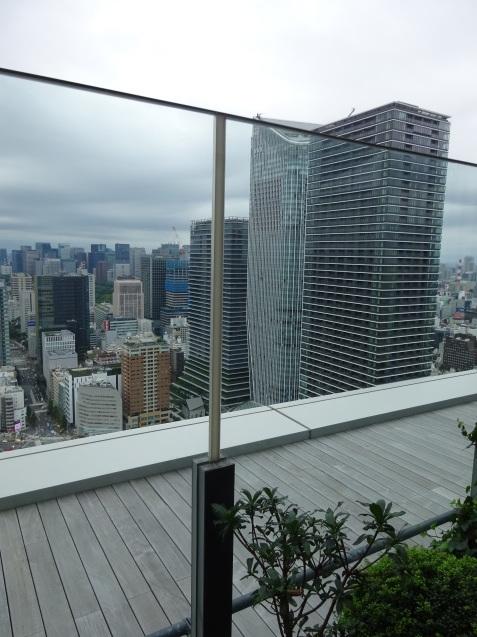 東京エディション虎ノ門 (3) 「スタジオテラスルーム」の続き_b0405262_19125779.jpg