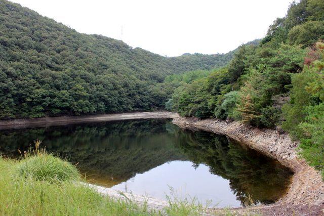 熊山登山 中尾鉄塔コースの巻_f0325295_14425629.jpg