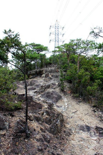 熊山登山 中尾鉄塔コースの巻_f0325295_14430130.jpg