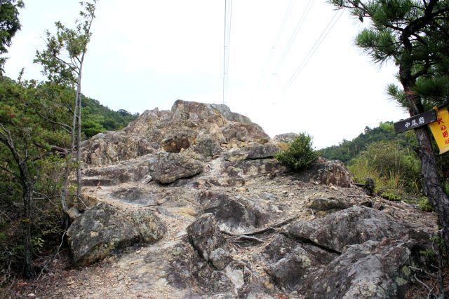 熊山登山 中尾鉄塔コースの巻_f0325295_14430545.jpg