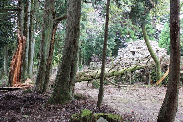 熊山登山 中尾鉄塔コースの巻_f0325295_17215624.jpg