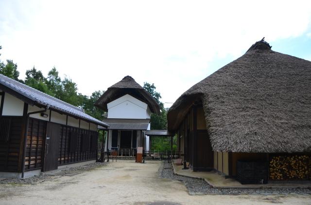 昭和記念公園(3)_a0223597_17450928.jpg