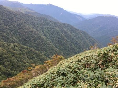 9月24 日(木)朝の気温11℃。曇り後雨。_c0089831_05543307.jpeg