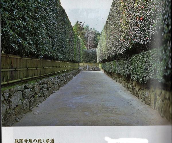 門井 慶喜著「銀閣の人」を読み終える_d0037233_13360680.jpg