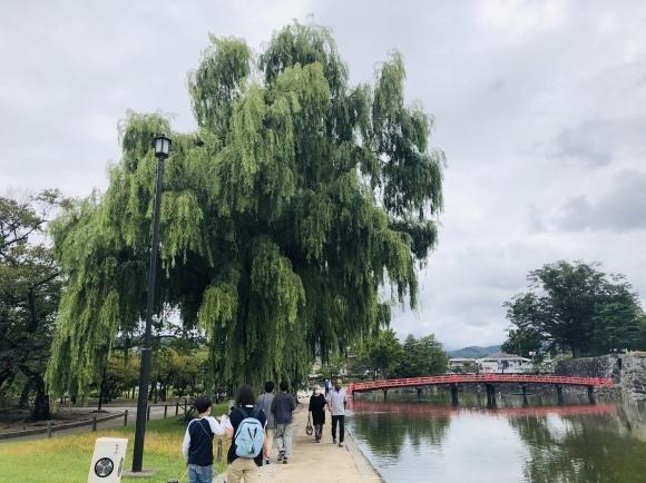 松本城へ_b0406108_16094419.jpeg