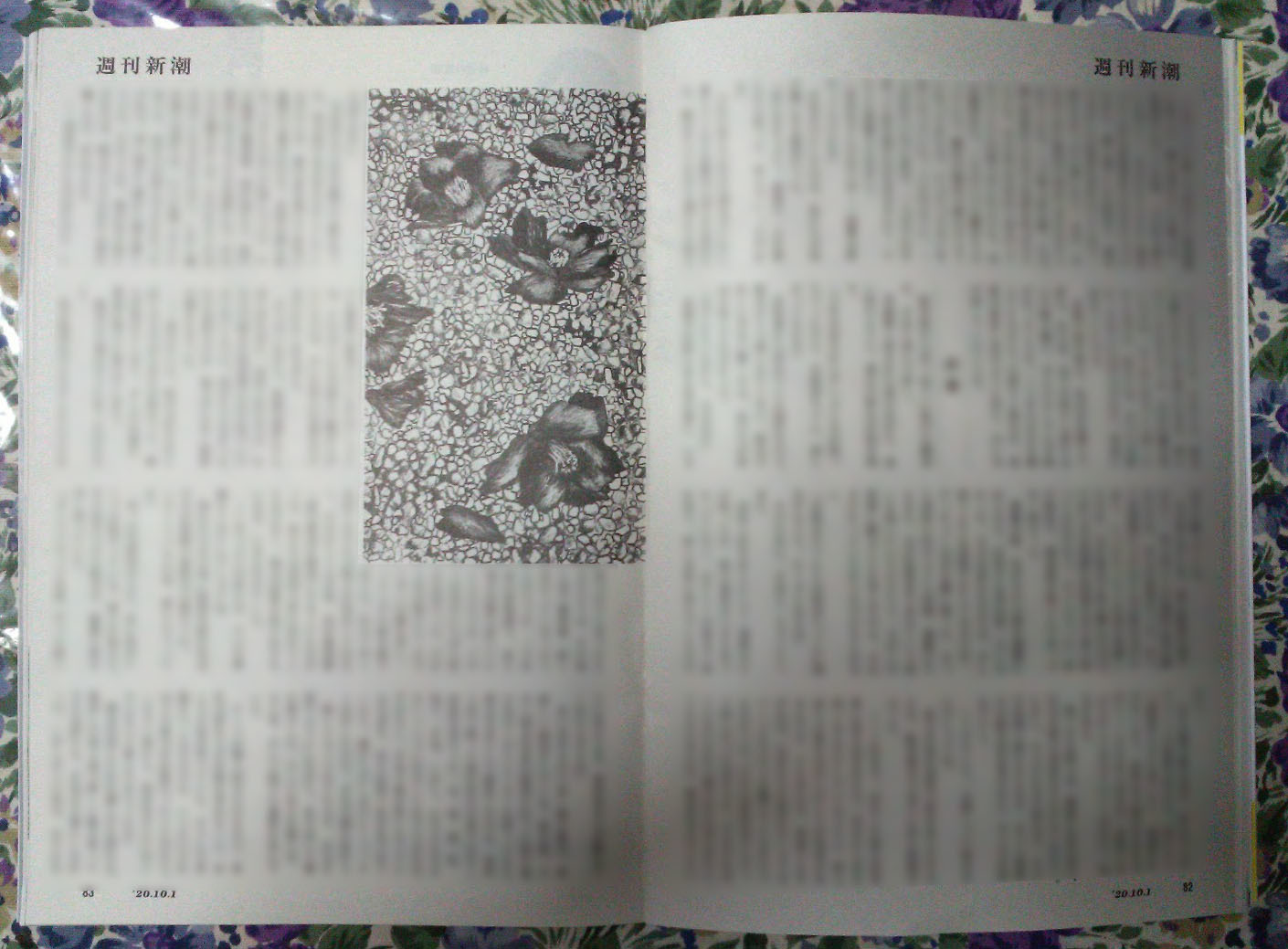 週刊新潮「雷神」挿絵 第36回〜最終回_b0136144_05360845.jpg