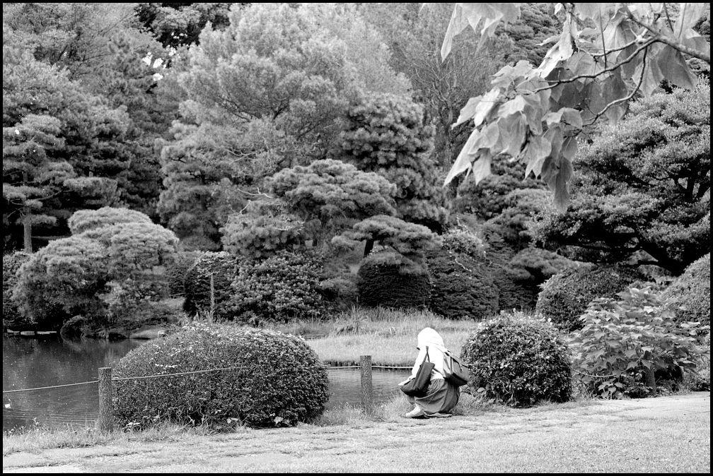 小石川植物園 -16_b0340572_21110328.jpg