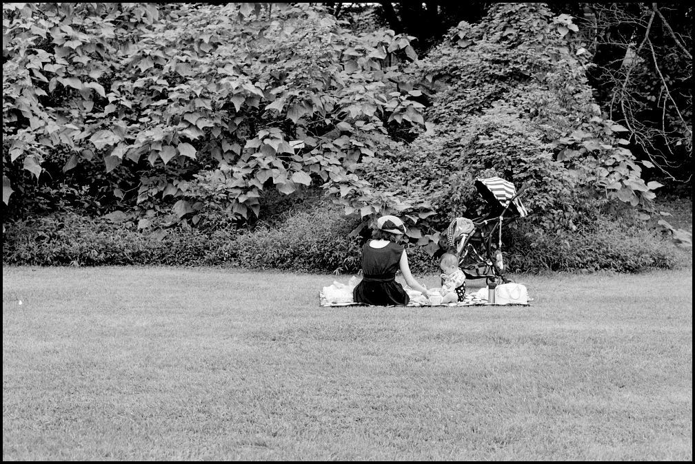 小石川植物園 -16_b0340572_21111330.jpg