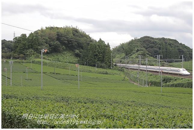 茶畑の中を_f0361079_19151586.jpg