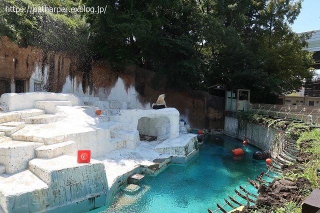 2020年8月 天王寺動物園 その4_a0052986_7353837.jpg