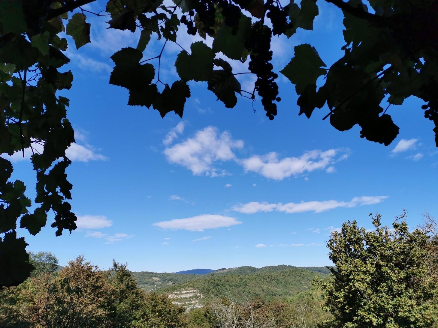 トスカーナに秋が到来_f0106597_22205172.jpg
