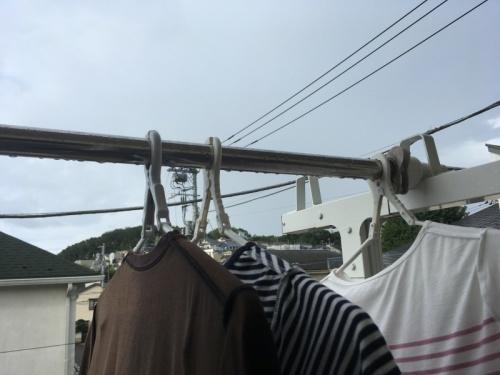 ニトリの洗濯ハンガー_f0369014_10402932.jpeg