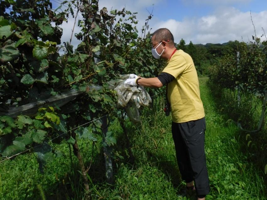 ぶどう狩りと農作業体験&イタリアンランチ_b0032437_18083094.jpg