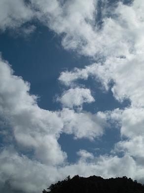 みなかぎと牡蠣うち・・・稲刈り、雨天順延!_d0005250_15575129.jpg
