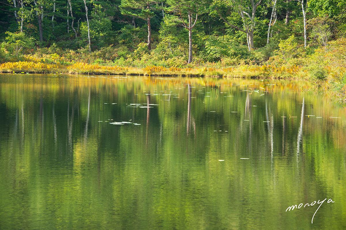 初秋の池_c0085877_06290256.jpg