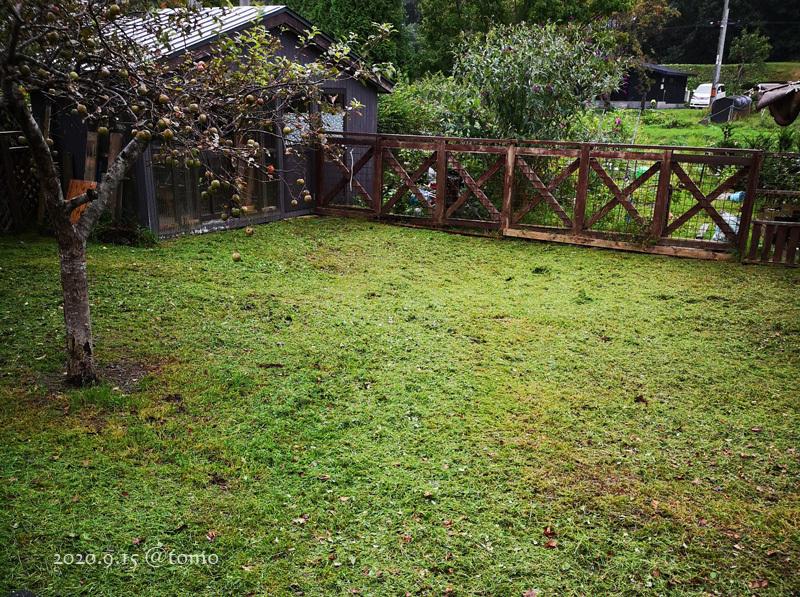 今日も草刈り_f0067179_12491994.jpg