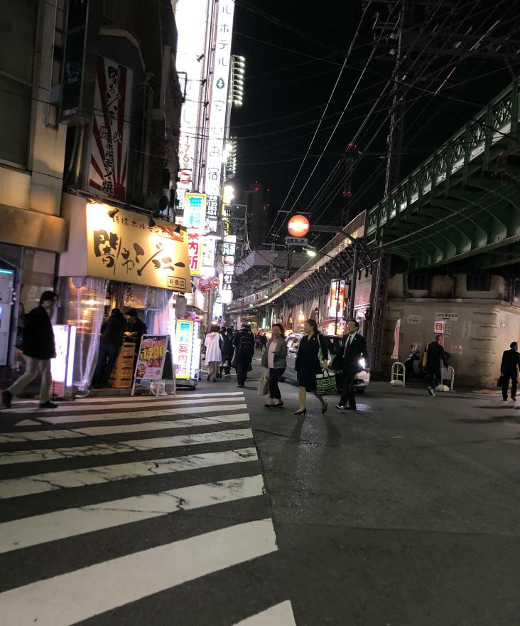 中年の日本帰郷 Vol.53  夜のガード下酒場ウキウキ歩き【@新橋】_e0034987_10334963.jpg