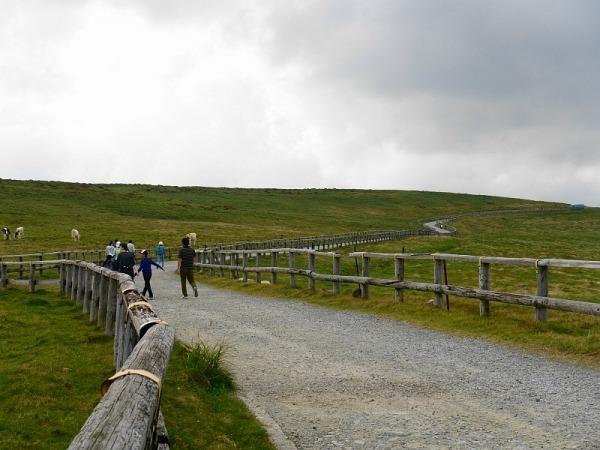 長野県ビーナスラインを巡る山旅 美ヶ原 SOTA#JA/NN-067_f0073587_01003973.jpg