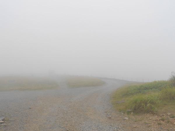 長野県ビーナスラインを巡る山旅 美ヶ原 SOTA#JA/NN-067_f0073587_01013059.jpg